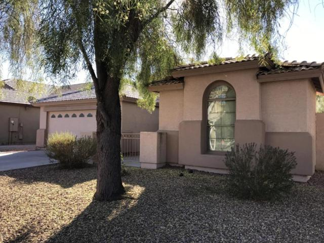11563 W Mohave Street, Avondale, AZ 85323 (MLS #5697195) :: Kelly Cook Real Estate Group
