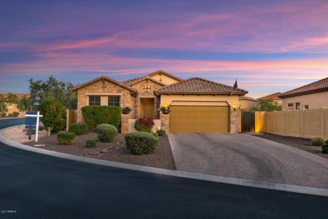 1947 N Channing, Mesa, AZ 85207 (MLS #5697225) :: Kelly Cook Real Estate Group