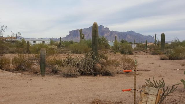 0 N Main Drive, Apache Junction, AZ 85120 (MLS #5697227) :: Yost Realty Group at RE/MAX Casa Grande