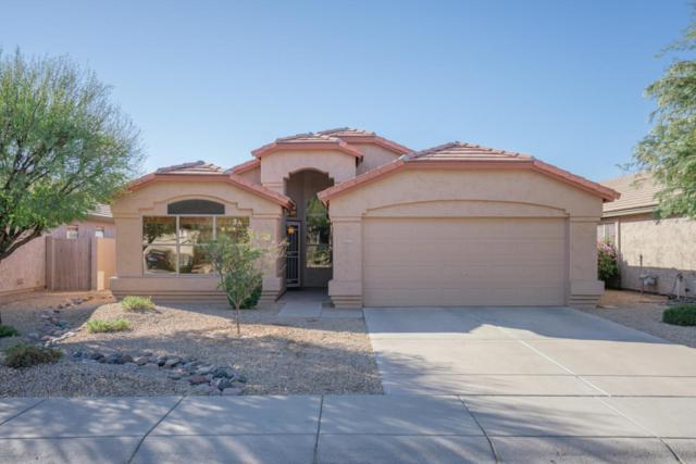 4515 E Lone Cactus Drive, Phoenix, AZ 85050 (MLS #5697267) :: Occasio Realty