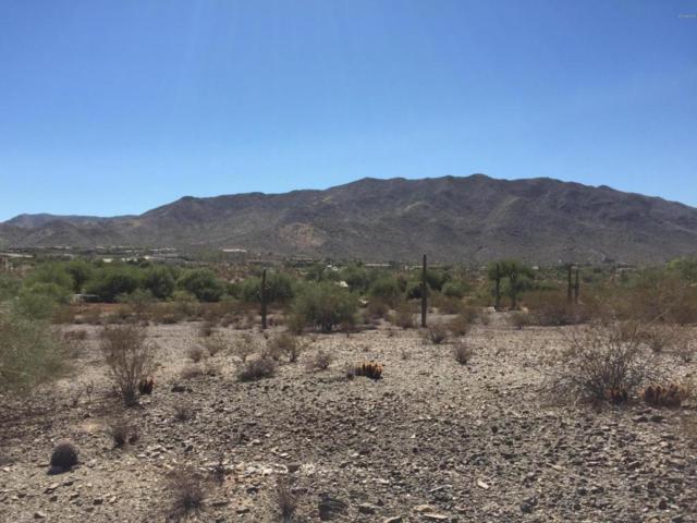 9430 S 19TH Avenue, Phoenix, AZ 85041 (MLS #5697293) :: Arizona Best Real Estate