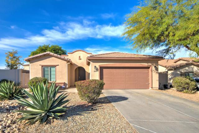 8008 S 53RD Lane, Laveen, AZ 85339 (MLS #5697310) :: Essential Properties, Inc.
