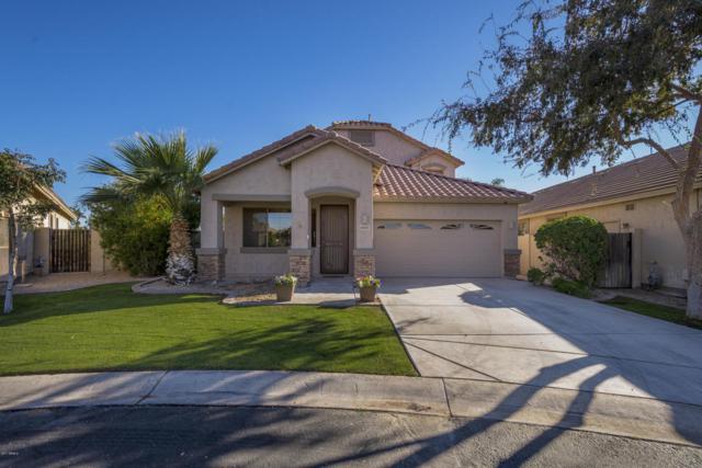 6847 S 27TH Place, Phoenix, AZ 85042 (MLS #5697314) :: Arizona Best Real Estate
