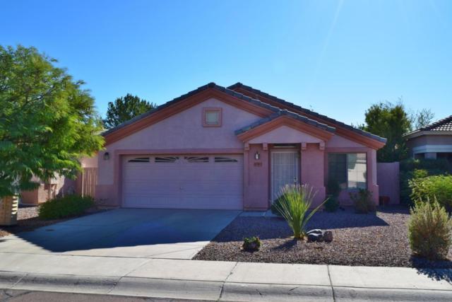 10383 W Runion Drive, Peoria, AZ 85382 (MLS #5697359) :: Desert Home Premier
