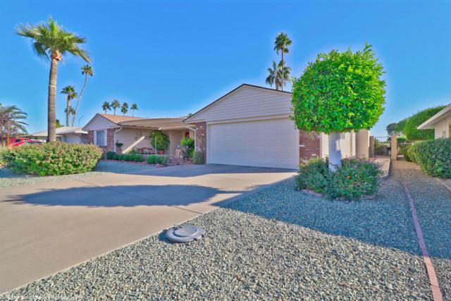 10705 W Pineaire Drive, Sun City, AZ 85351 (MLS #5697396) :: Essential Properties, Inc.