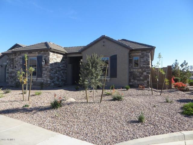 3881 S Granite Drive, Chandler, AZ 85286 (MLS #5697476) :: Jablonski Real Estate Group