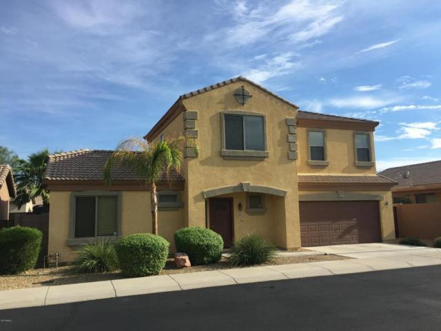 8979 W Bremen Street, Peoria, AZ 85382 (MLS #5697480) :: Power Realty Group Model Home Center