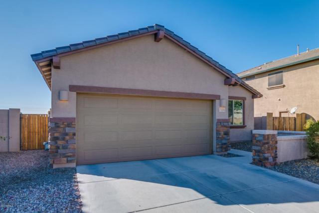 7331 W Monte Cristo Avenue, Peoria, AZ 85382 (MLS #5697483) :: Occasio Realty