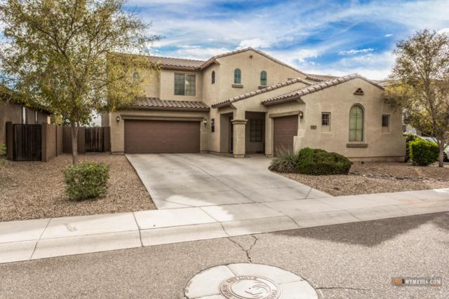 5427 W Novak Way, Laveen, AZ 85339 (MLS #5697489) :: Group 46:10