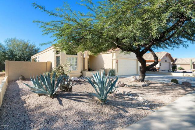 8925 E Sleepy Hollow Trail, Gold Canyon, AZ 85118 (MLS #5697513) :: Realty Executives