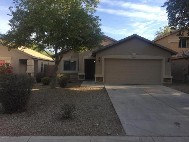 28133 N Superior Road, Queen Creek, AZ 85143 (MLS #5697516) :: Power Realty Group Model Home Center