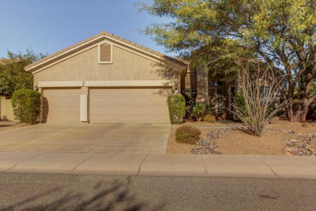 29255 N 49TH Street, Cave Creek, AZ 85331 (MLS #5697540) :: Occasio Realty