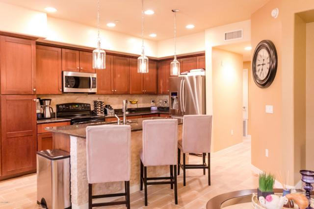 17850 N 68TH Street #1113, Phoenix, AZ 85054 (MLS #5697571) :: Occasio Realty