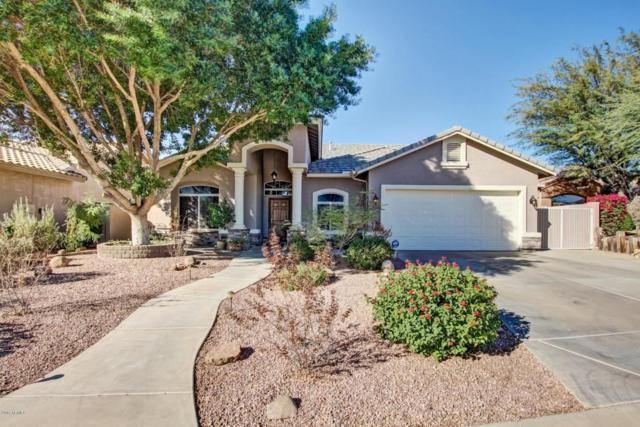 2628 N 64TH Street, Mesa, AZ 85215 (MLS #5697599) :: Power Realty Group Model Home Center