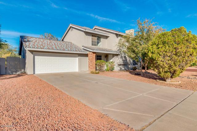 8008 W Columbine Drive, Peoria, AZ 85381 (MLS #5697603) :: Power Realty Group Model Home Center