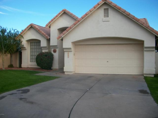 2080 W Boulder Court, Chandler, AZ 85248 (MLS #5697610) :: Realty Executives