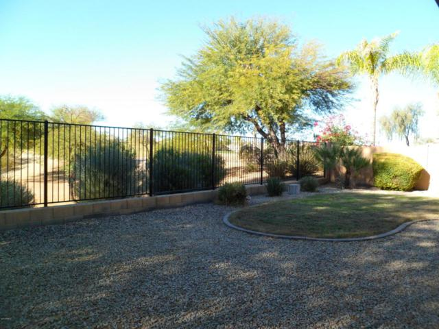 29448 N Broken Shale Drive, San Tan Valley, AZ 85143 (MLS #5697664) :: Power Realty Group Model Home Center