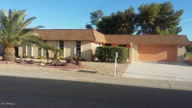 14235 N Cameo Drive, Sun City, AZ 85351 (MLS #5697669) :: Occasio Realty
