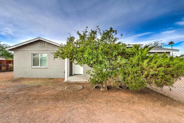 216 S Saguaro Drive, Apache Junction, AZ 85120 (MLS #5697692) :: Realty Executives