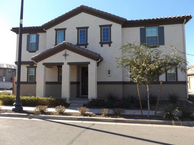 924 S Swallow Lane, Gilbert, AZ 85296 (MLS #5697721) :: Occasio Realty