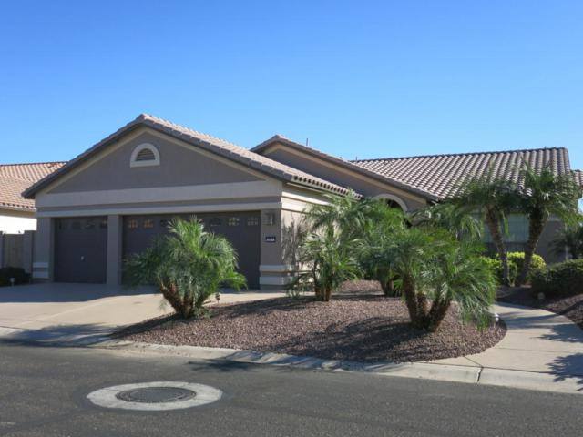 3211 N 162ND Drive, Goodyear, AZ 85395 (MLS #5697729) :: Desert Home Premier