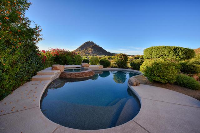 23780 N 114TH Street, Scottsdale, AZ 85255 (MLS #5697731) :: Occasio Realty