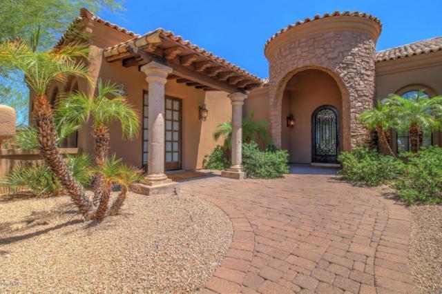 10493 N 134TH Way, Scottsdale, AZ 85259 (MLS #5697776) :: Occasio Realty