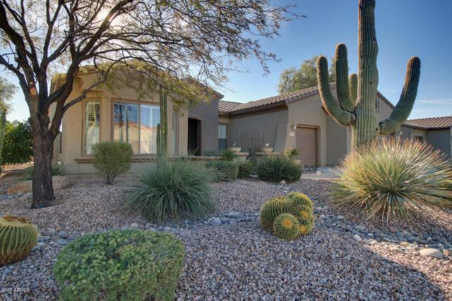 21417 N Black Bear Lodge Drive, Surprise, AZ 85387 (MLS #5697779) :: Desert Home Premier
