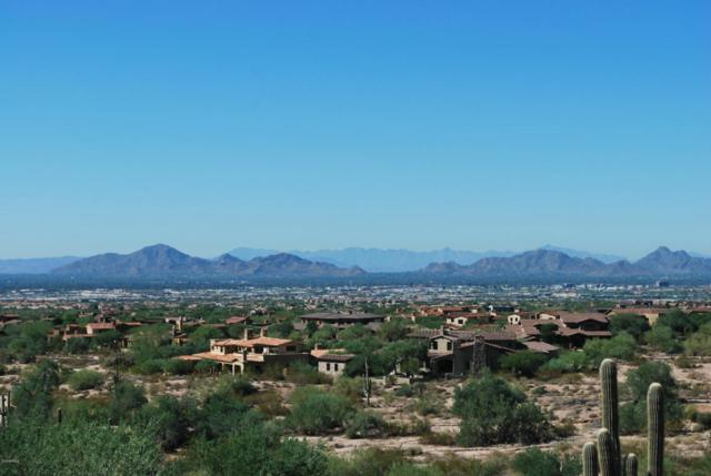 21376 N 102ND Street, Scottsdale, AZ 85255 (MLS #5697783) :: Essential Properties, Inc.
