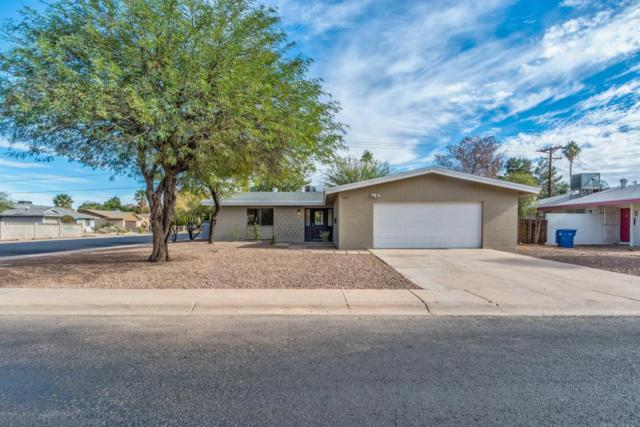 3403 S Terrace Road, Tempe, AZ 85282 (MLS #5697805) :: Occasio Realty