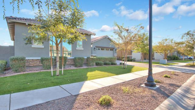 7423 E Pampa Avenue, Mesa, AZ 85212 (MLS #5697875) :: Occasio Realty