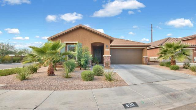 430 S Hassett, Mesa, AZ 85208 (MLS #5697891) :: Realty Executives