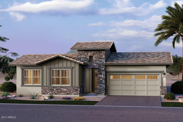 13765 W Sarano Terrace, Litchfield Park, AZ 85340 (MLS #5697903) :: Group 46:10