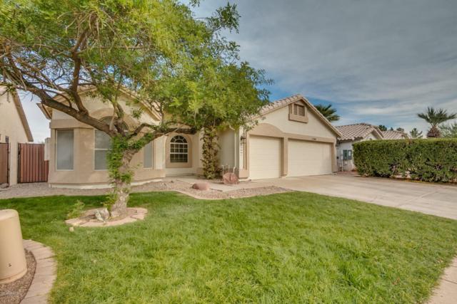 1704 W Merrill Lane, Gilbert, AZ 85233 (MLS #5697917) :: Occasio Realty