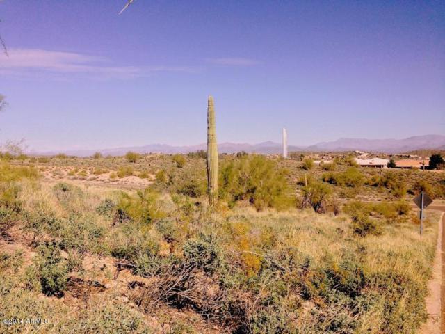 16710 E Hawk Drive, Fountain Hills, AZ 85268 (MLS #5697925) :: Occasio Realty