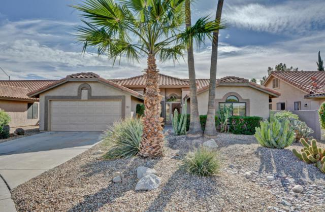 9123 W Kerry Lane, Peoria, AZ 85382 (MLS #5697948) :: Desert Home Premier