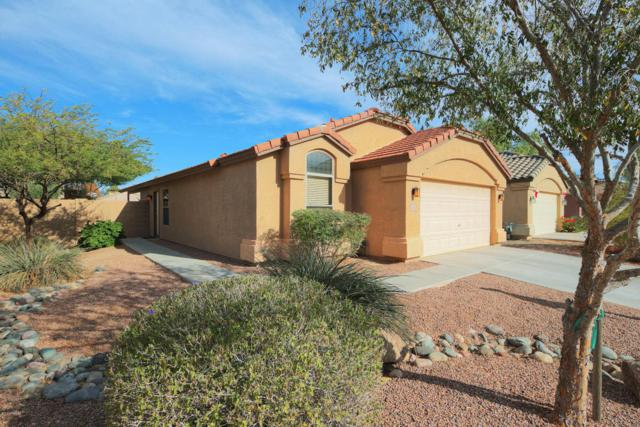 42512 W Bunker Drive, Maricopa, AZ 85138 (MLS #5697962) :: Group 46:10