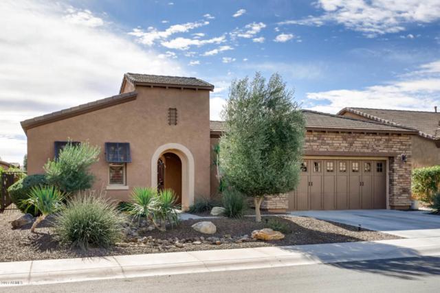 13043 W Cliffrose Road, Peoria, AZ 85383 (MLS #5697972) :: Desert Home Premier