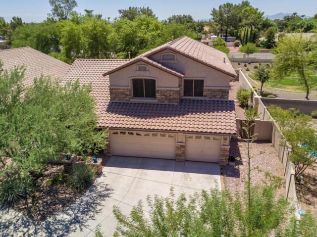 5913 W Poinsettia Drive, Glendale, AZ 85304 (MLS #5698003) :: Realty Executives