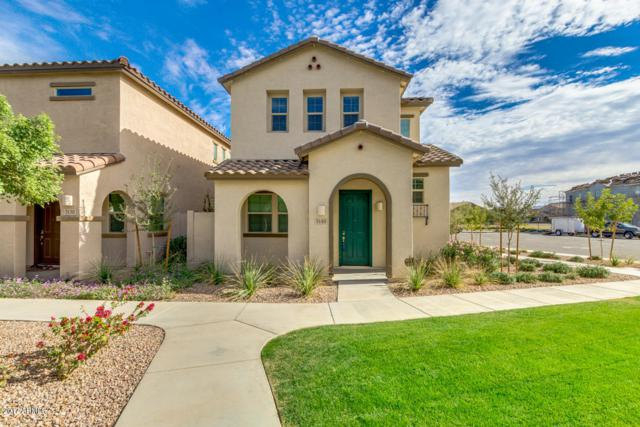 3140 S Mingus Drive, Chandler, AZ 85286 (MLS #5698039) :: Group 46:10