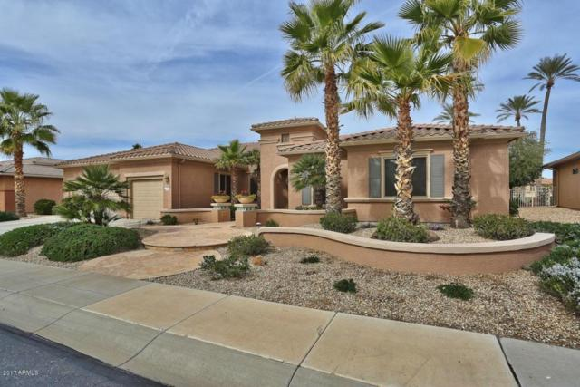 17208 W Sky Mist Way, Surprise, AZ 85387 (MLS #5698041) :: Group 46:10