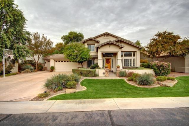 2770 E Cedar Place, Chandler, AZ 85249 (MLS #5698067) :: Group 46:10