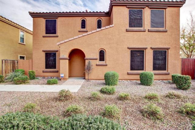 3293 E Loma Vista Street, Gilbert, AZ 85295 (MLS #5698070) :: Group 46:10
