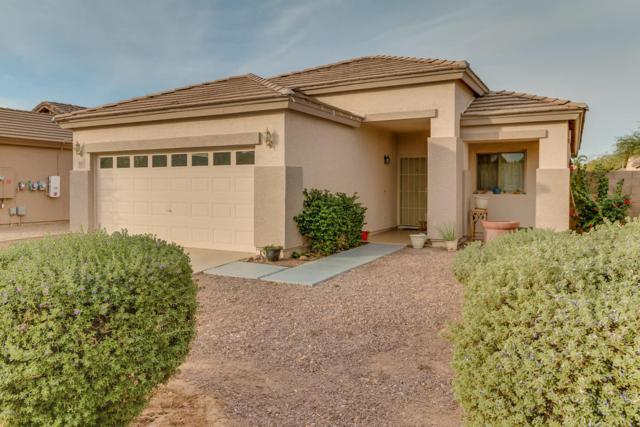 1014 S 5TH Avenue, Avondale, AZ 85323 (MLS #5698088) :: Group 46:10