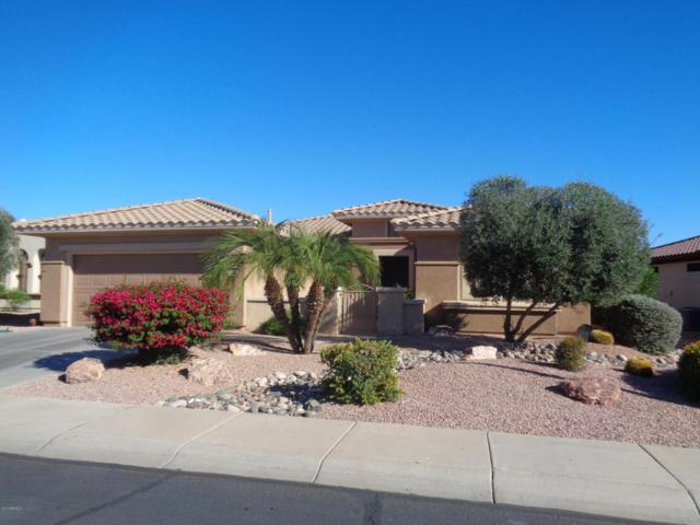 20065 N Pinewish Court, Surprise, AZ 85374 (MLS #5698145) :: Group 46:10