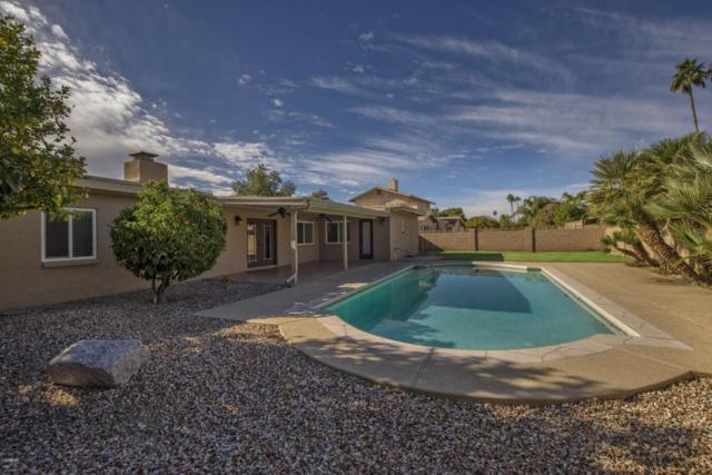 5052 E Larkspur Drive, Scottsdale, AZ 85254 (MLS #5698153) :: Group 46:10