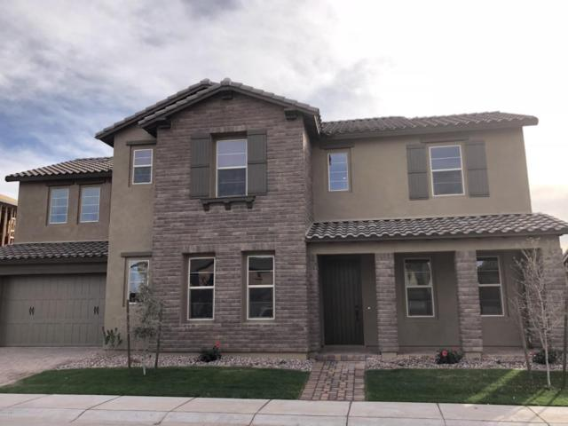 915 W Glacier Drive, Chandler, AZ 85248 (MLS #5698173) :: Group 46:10