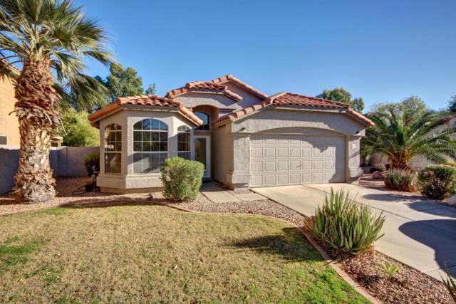 2113 S Terripin Circle, Mesa, AZ 85209 (MLS #5698185) :: The Bill and Cindy Flowers Team