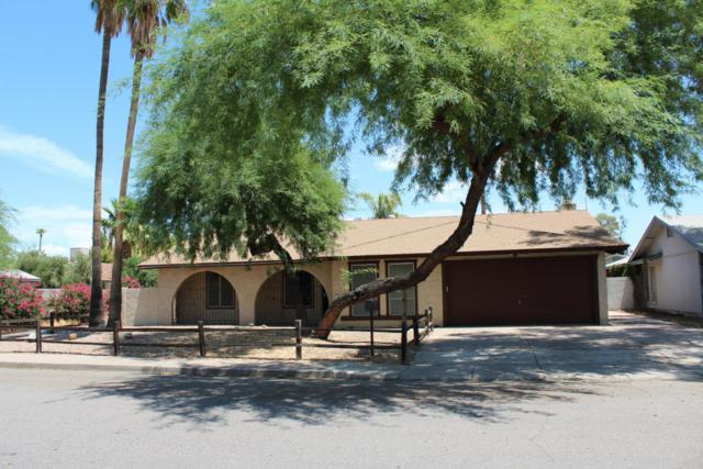 1028 N Evergreen Street, Chandler, AZ 85225 (MLS #5698187) :: Group 46:10