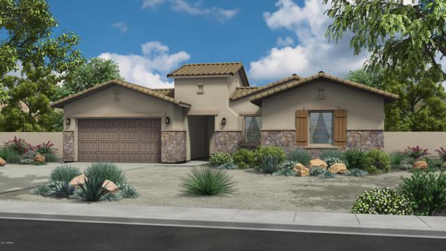 9735 W Rowel Road, Peoria, AZ 85383 (MLS #5698192) :: Group 46:10